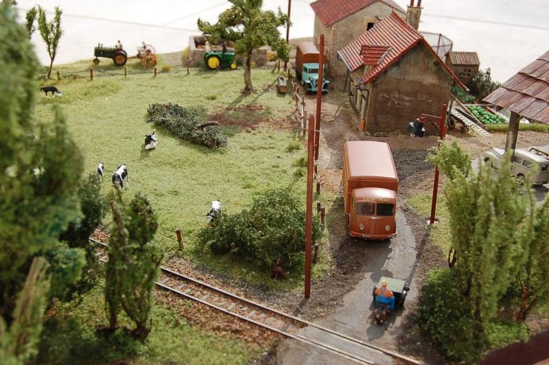 La ferme isolée et son pré à vaches en HO - Page 3 Dsc_8538