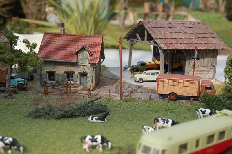 La ferme isolée et son pré à vaches en HO - Page 3 Dsc_8614