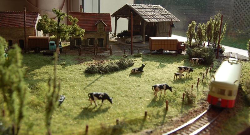 La ferme isolée et son pré à vaches en HO - Page 3 Dsc_8617