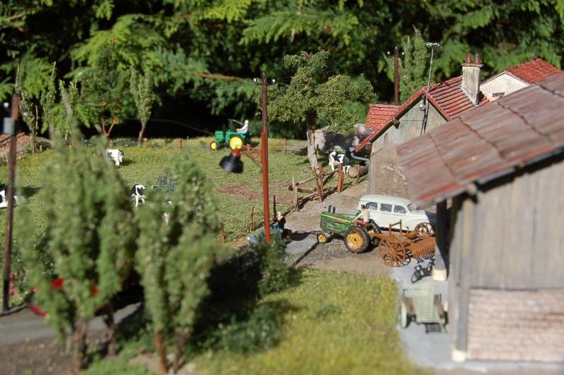 La ferme isolée et son pré à vaches en HO - Page 3 Dsc_8715