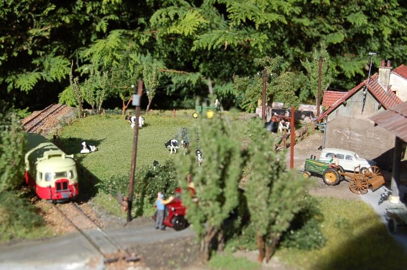 La ferme isolée et son pré à vaches en HO - Page 3 Dsc_8716