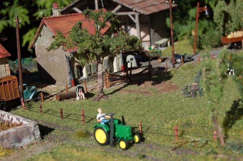 La ferme isolée et son pré à vaches en HO - Page 3 Dsc_8717