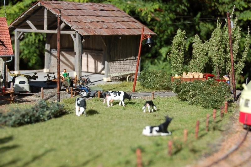 La ferme isolée et son pré à vaches en HO - Page 3 Dsc_8718