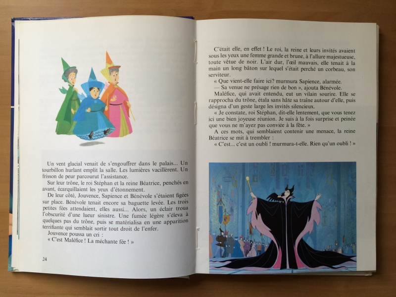 La Belle au Bois Dormant - Page 3 Img_0418