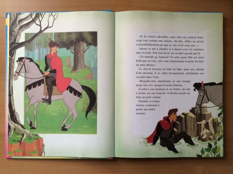 La Belle au Bois Dormant - Page 3 Img_0421