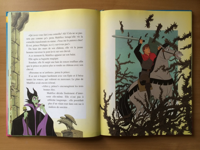 La Belle au Bois Dormant - Page 3 Img_0423