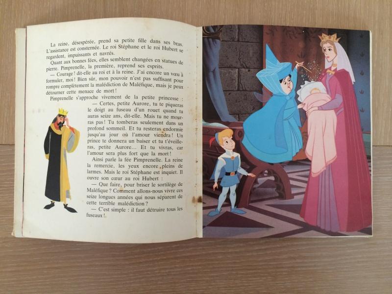 La Belle au Bois Dormant - Page 3 Img_0426