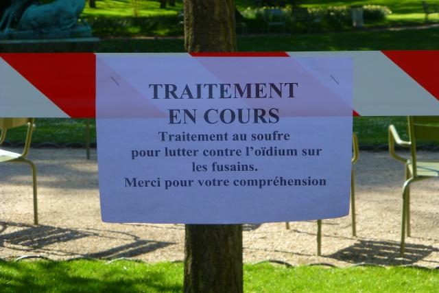 Choses vues dans le jardin du Luxembourg, à Paris - Page 4 Luxavr11