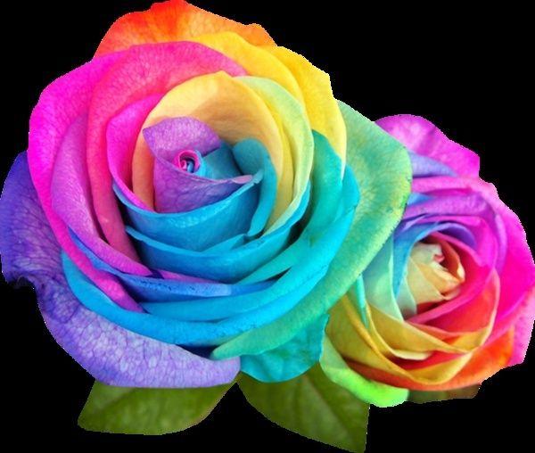 tout est multicolore - Page 39 88255b12