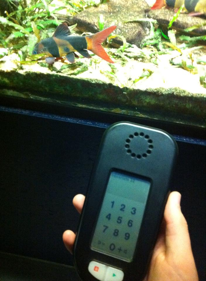Aquarium de Bruxelles  12072510