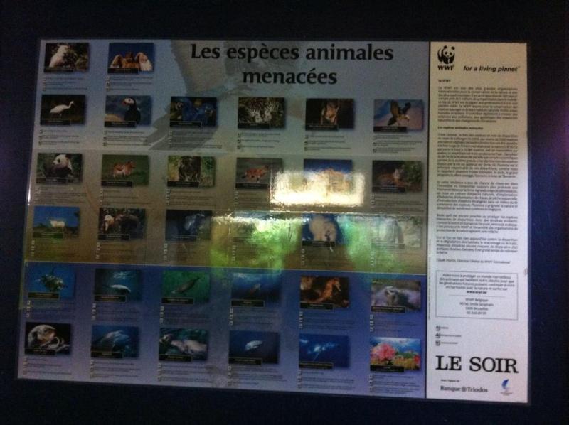 Aquarium de Bruxelles  12079310