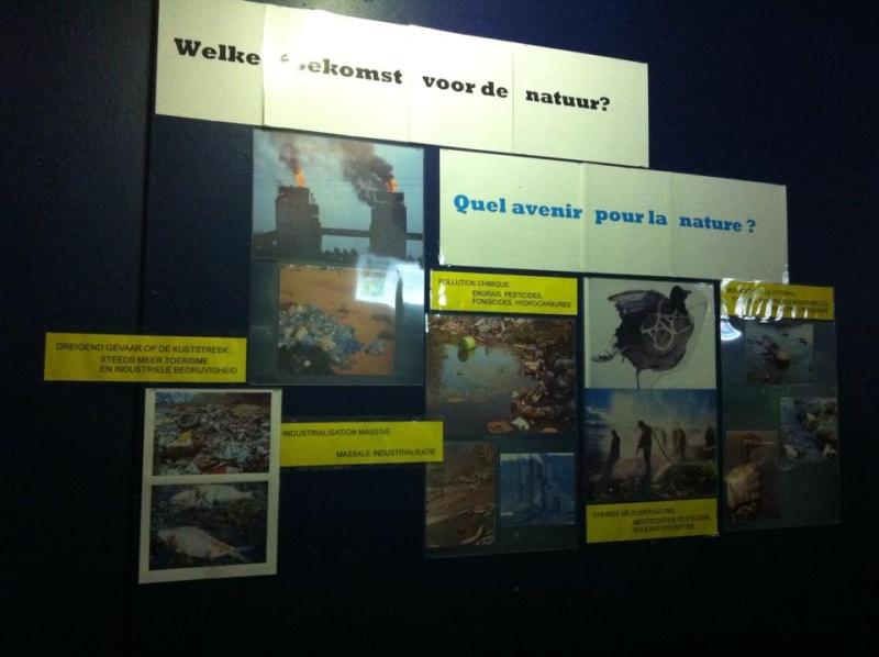 Aquarium de Bruxelles  12107811