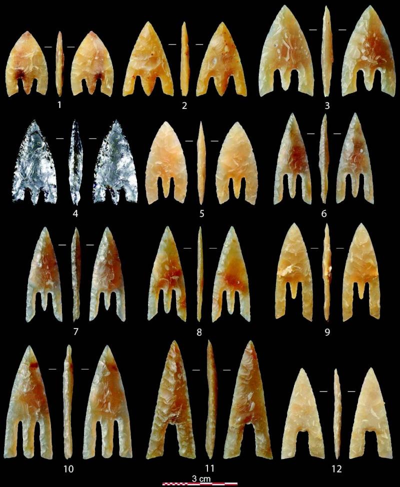 l'ostréiculteur version silex Nicola11