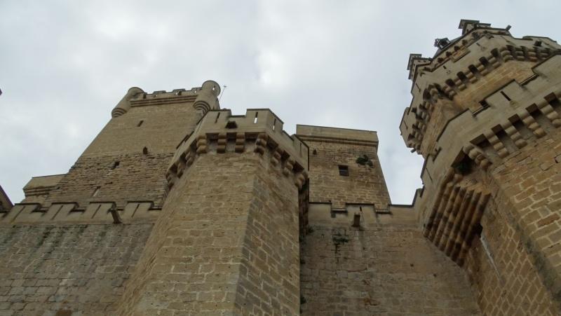 Un petit tour en Espagne du côté de Pampelune Dsc03711