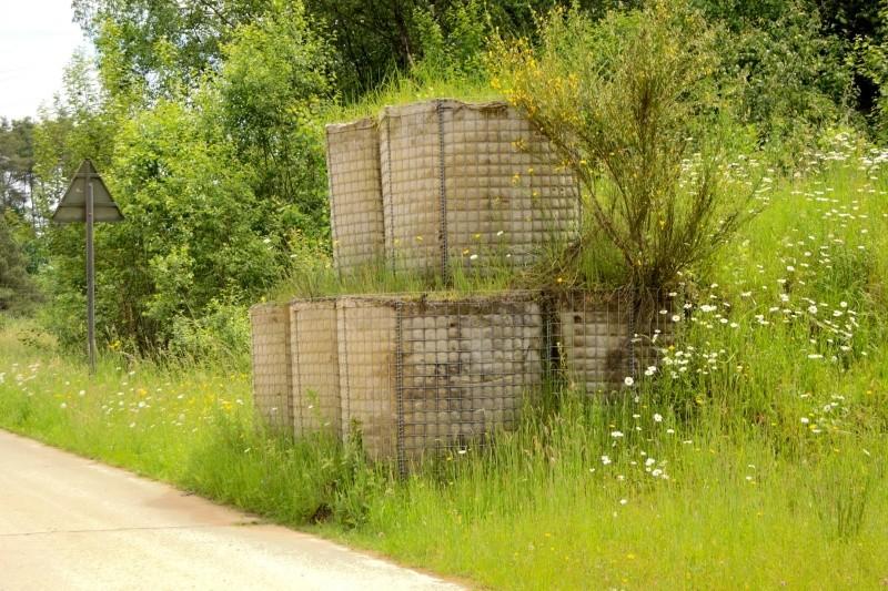 (denis simon) fabrication de Bastion Wall Dsc_9712