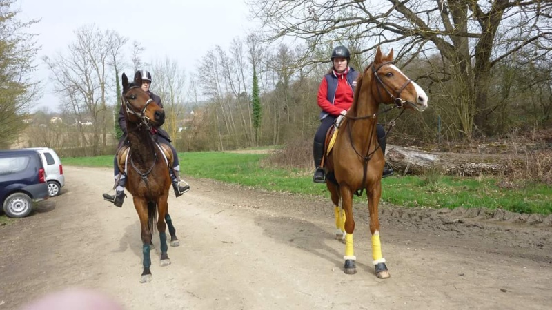 Chevauchée de Steinbrunn avec Chrislau et Mano  Fb_img15