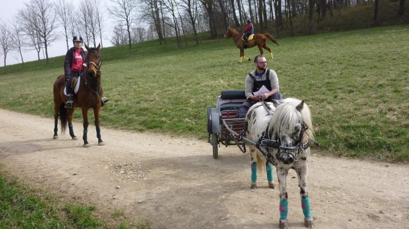 Chevauchée de Steinbrunn avec Chrislau et Mano  Receiv14