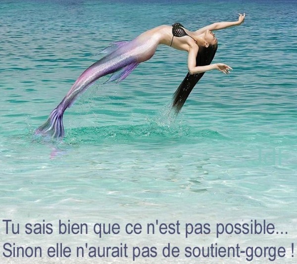 HUMOUR EN VRAC - Page 30 Sirene10