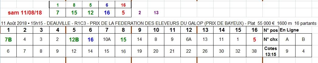 11/08/2018 --- DEAUVILLE --- R1C3 --- Mise 6 € => Gains 0 €. Scree401