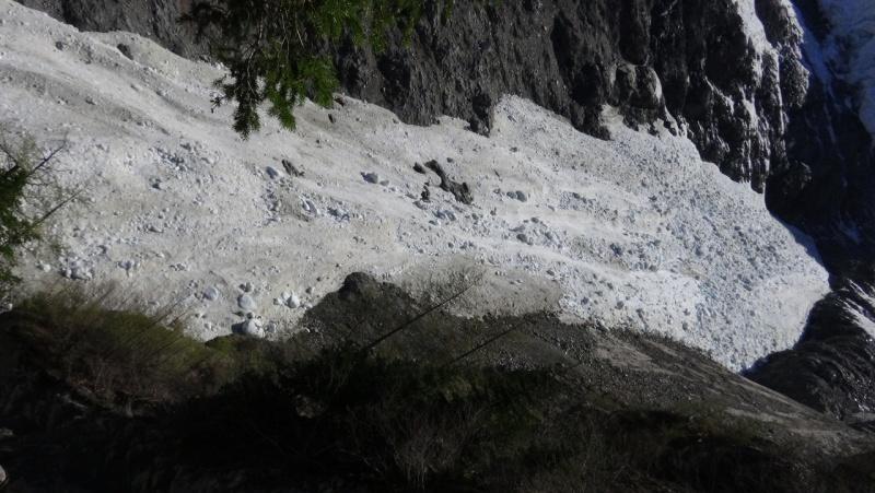 Le glacier des Bossons - Page 12 Dsc00012