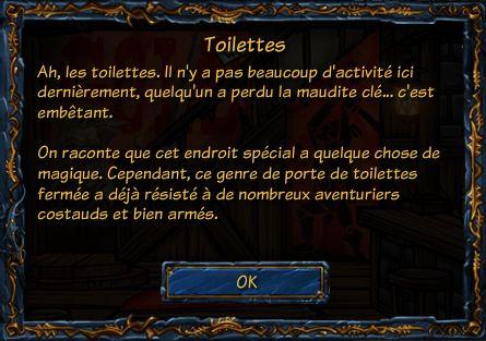 Toilettes Arcanes Accesn10