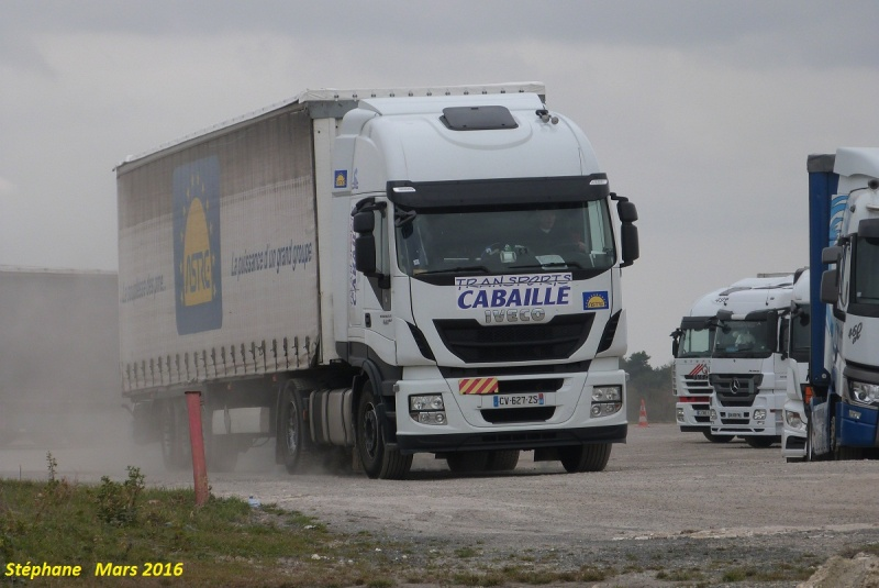 Cabaillé (Le Boulou) (66) P1330680