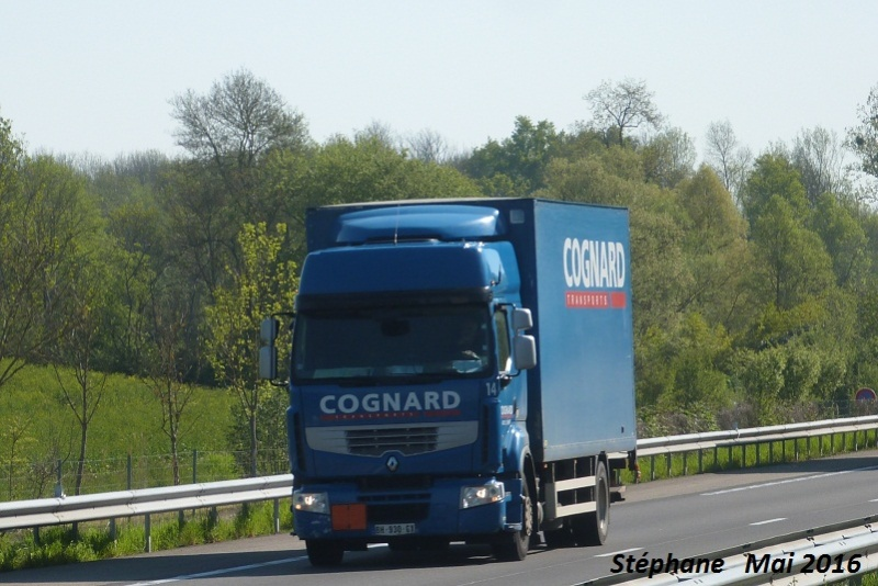 Cognard (groupe Fatton)(Riorges, 42) P1330859