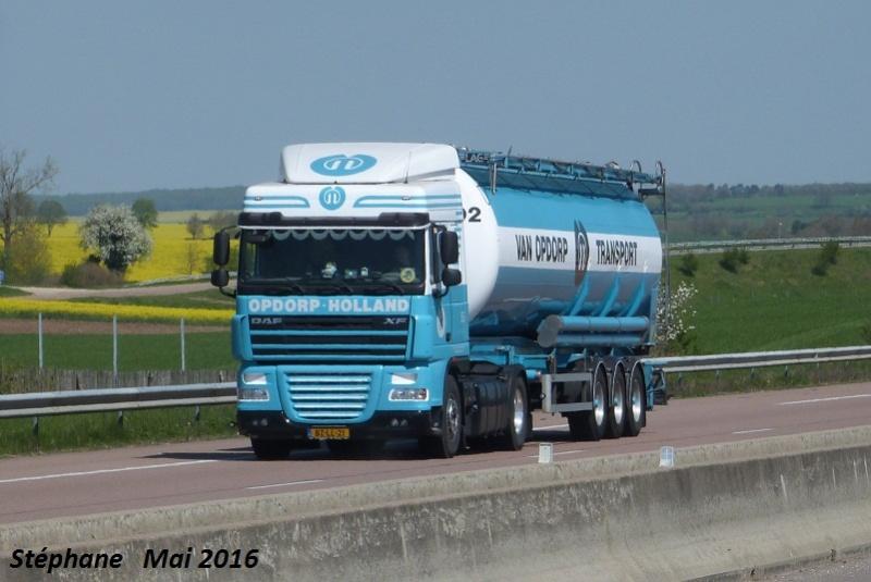Van Opdorp (Sas van Gent) - Page 3 P1330934