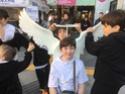 Tournée de printemps 2016 en Corée du Sud 12983810