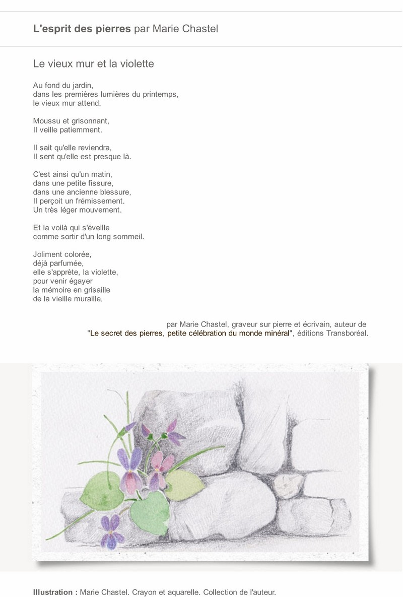 """Pierre qui roule  Saison 14 - Spécial """"Printemps de la pierre sèche"""" 8_copi10"""