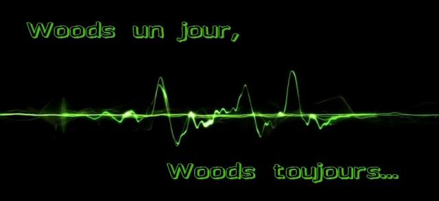 [ Blog-random/legacy] Woods un jour, Woods toujours...(abandonnée) 18302_11