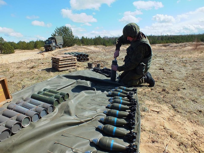 Armée lituanienne/Lithuanian Armed Forces - Page 4 2435