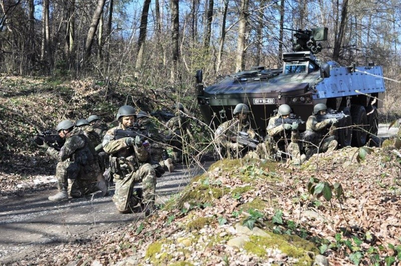 Slovenian Armed Forces / Slovenska vojska - Page 2 2948