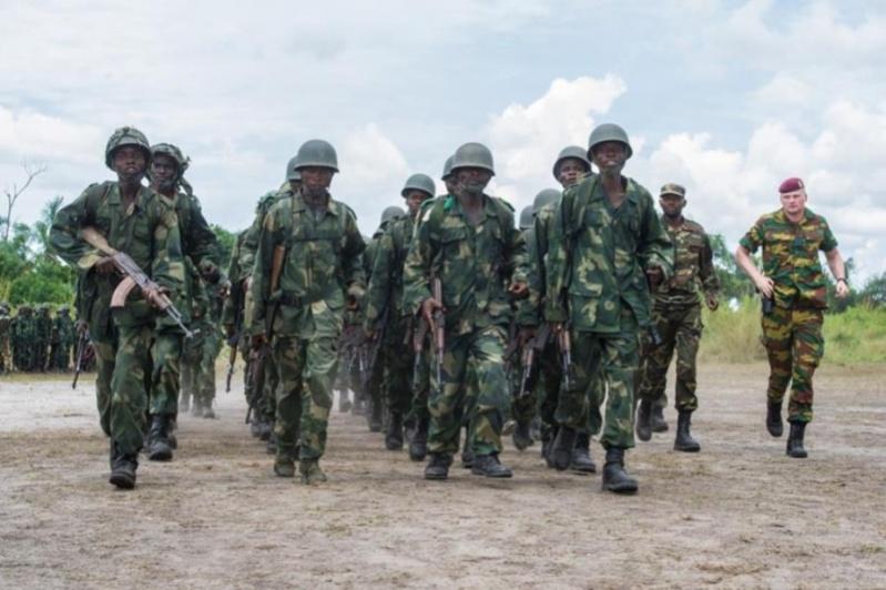 Forces Armées de la République Démocratique du Congo (FARDC) - Page 4 3056