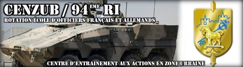 Armée Française / French Armed Forces - Page 5 3093