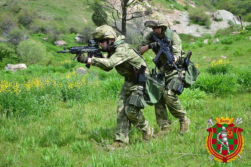 Armée Biélorusse / Armed Forces of Belarus - Page 5 31134