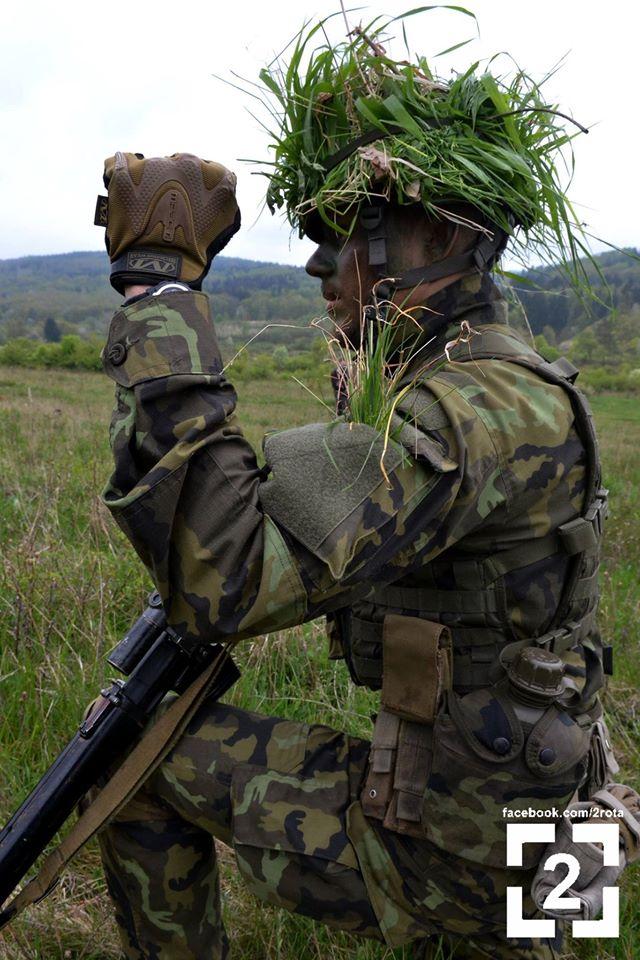 Armée tchèque/Czech Armed Forces - Page 8 31136