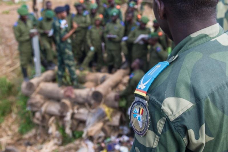 Forces Armées de la République Démocratique du Congo (FARDC) - Page 4 3621