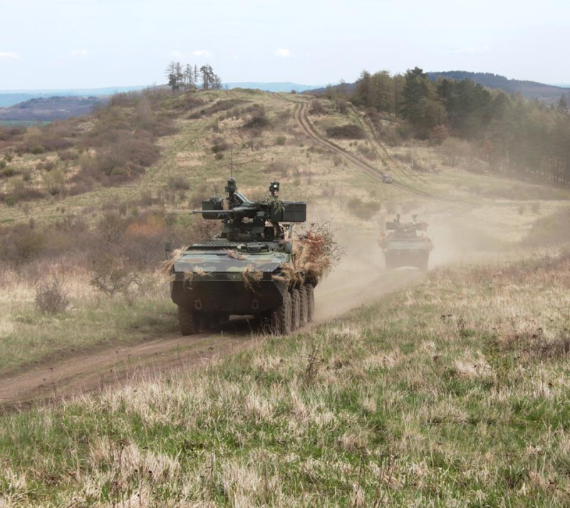 Armée tchèque/Czech Armed Forces - Page 7 3717