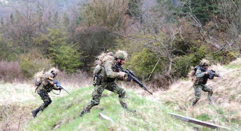 Armée tchèque/Czech Armed Forces - Page 7 4114