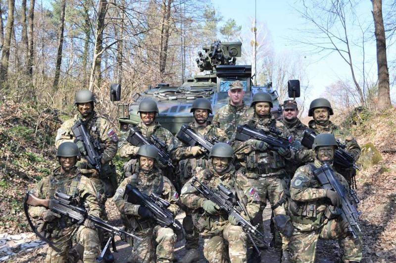 Slovenian Armed Forces / Slovenska vojska - Page 2 4213