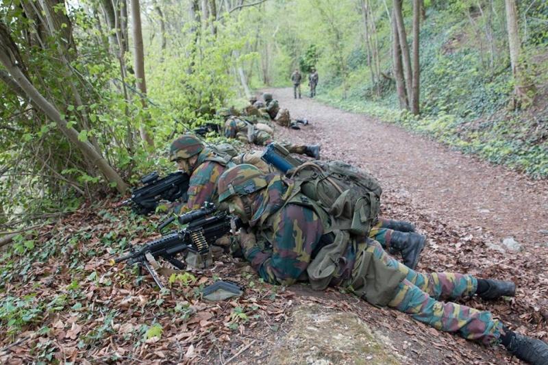Armée Belge / Defensie van België / Belgian Army  - Page 4 4423