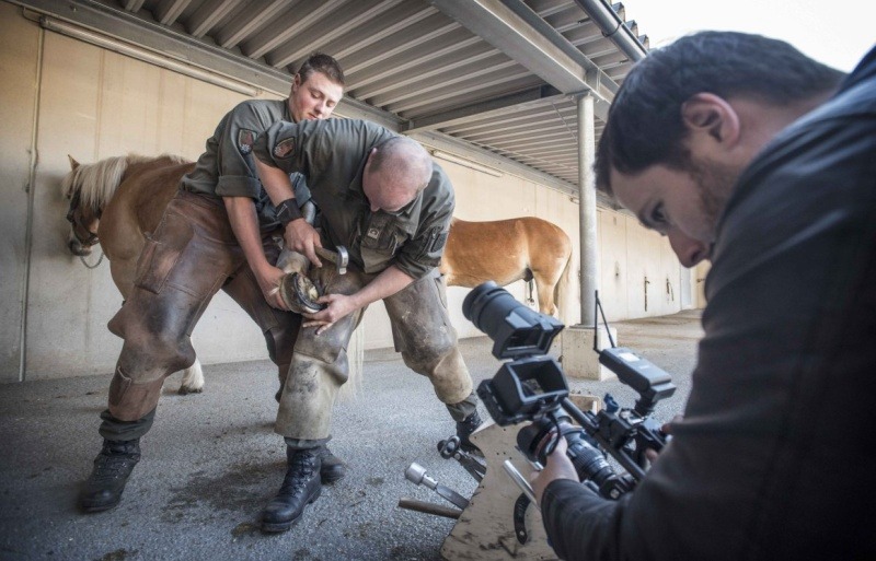 Animaux soldats - Page 6 4911