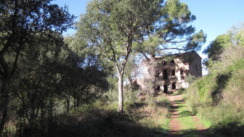 Sábado 28 de mayo. Barranco de Sas–Pico Carrascal por la Mosquera. Sierra de Espadán-Azuébar–Castellón Finca_10