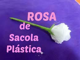 Rosas con bolsas   de plástico Sacola10