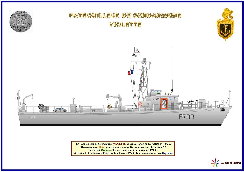 VIOLETTE - P788 Patrou10