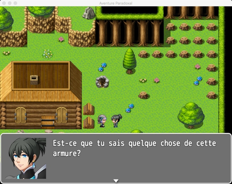 Aventure Paradoxale Screen14