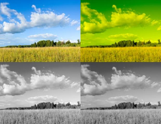 Canon PowerShot SX240 HS Digitalkamera und s/w Aufnahmen mit Gelbfilter Gelbfi10