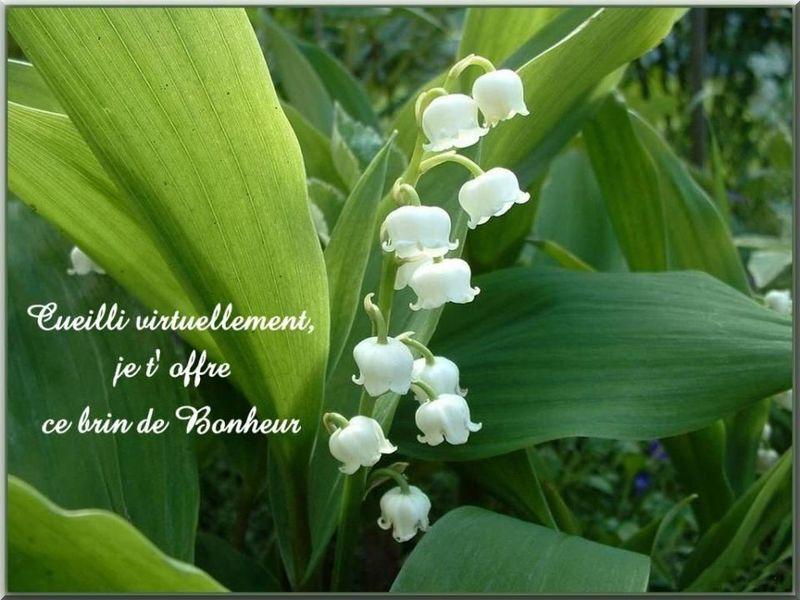 Bonjour, bonsoir, vos humeurs du jour  ;) 52579512