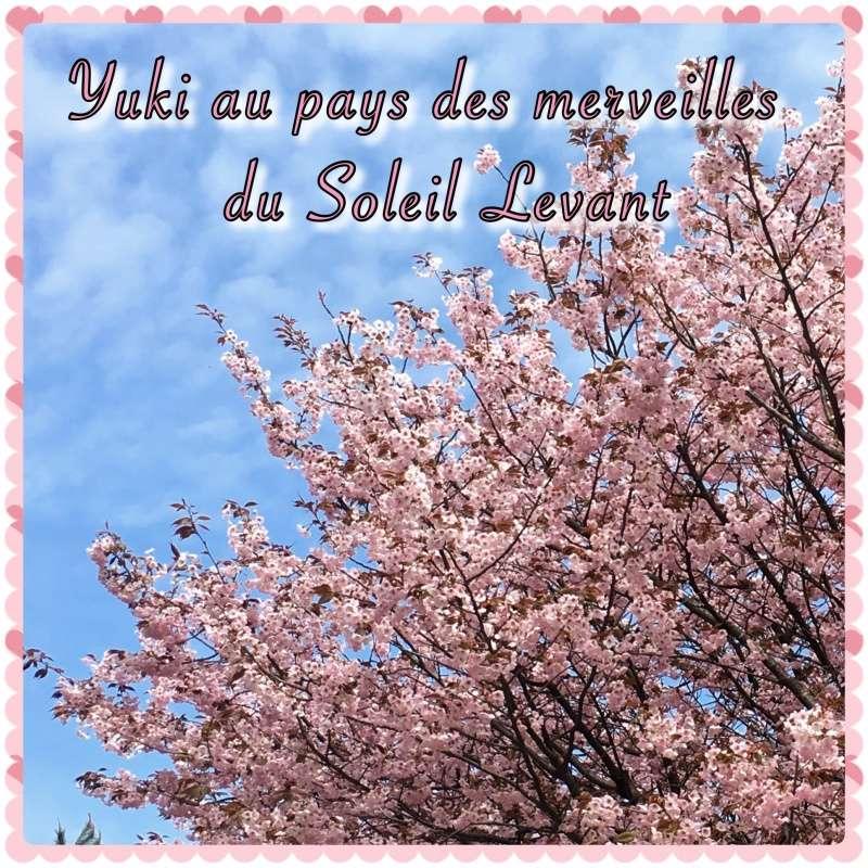 [TR] Yuki au pays des merveilles du Soleil Levant  Img_0111